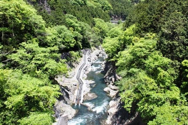 つり橋から眺める景色