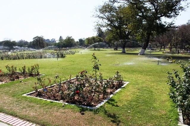 公園にはスプリンクラーが沢山水を撒いていた