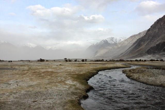 砂丘付近には小川が流れる