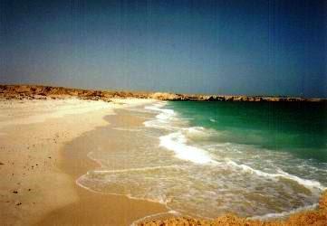 ワディ・シャーブ付近のビーチ