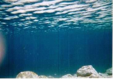 隕石が落ちたといわれるシンク・ホールの水中