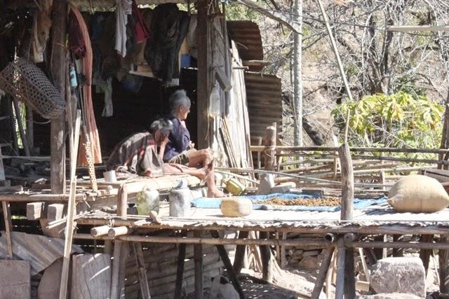 コットンを造っている村民