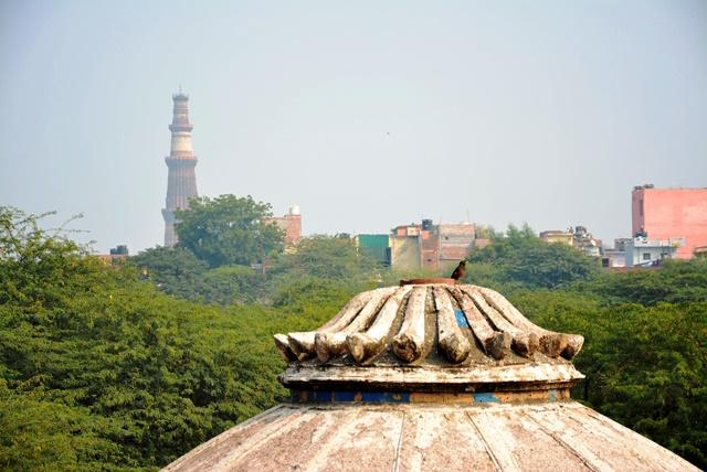 階段井戸の屋上から眺めるクトゥブミナール