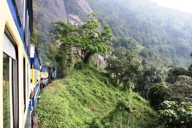 ニルギリ鉄道 景色