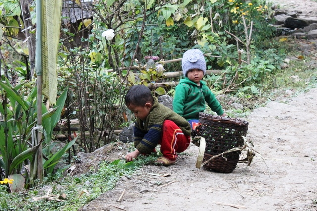 村で放牧の草を刈っている男の子