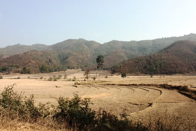 のどかな田舎の景色