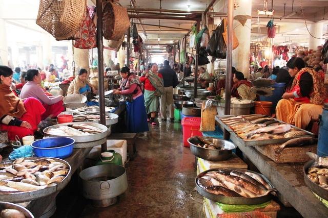 魚売り場も清潔です