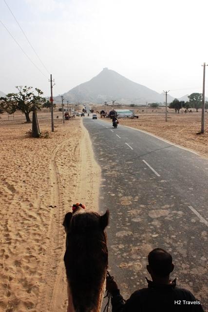 ラクダに乗ったところからの景色