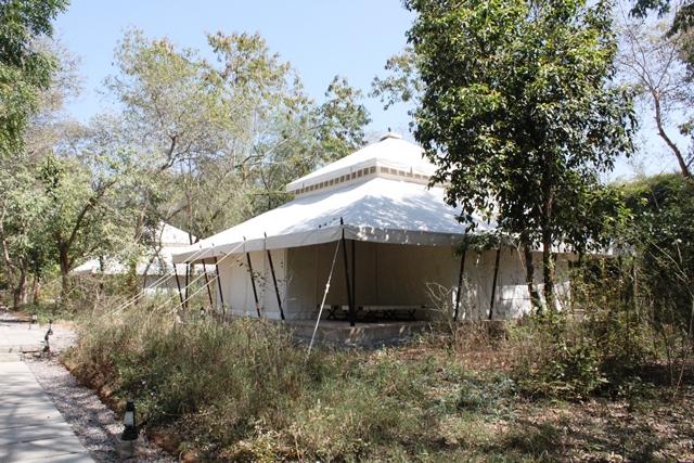 テントの外見