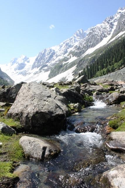 真夏のタジワス氷河