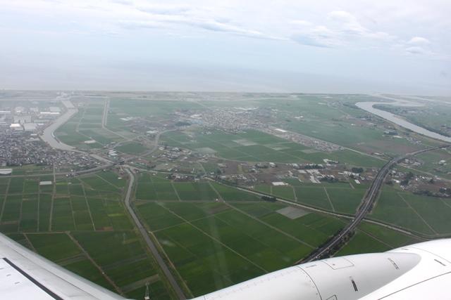 津波の被害を受けた地域