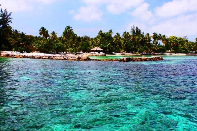 リゾート付近の海