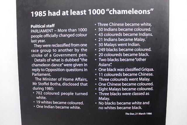 人種が変わった「カメレオン」の人達
