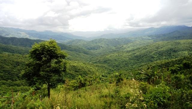 ミャンマー国境を眺める