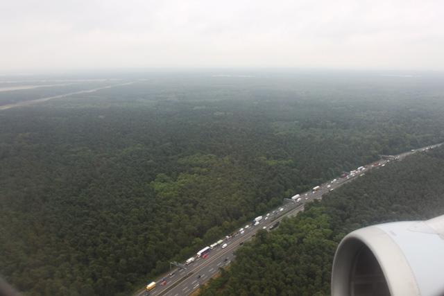 深いフランクフルト空港付近の森