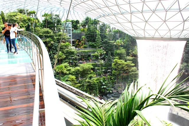 シンガポール 旅行:最上階からの眺め(有料)